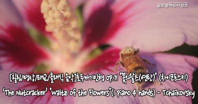 """[힐링/명상/태교/클래식 음악]호두까기인형 op.71 """"꽃의왈츠(연탄)"""" (차이코프스키)"""