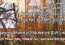[힐링/명상/ASMR 음악 듣기]힐링 ASMR 한적한 숲속 산책 중 새소리